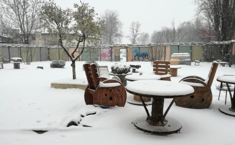今日は雪景色!